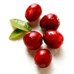 Cranberries extend longevity at any age