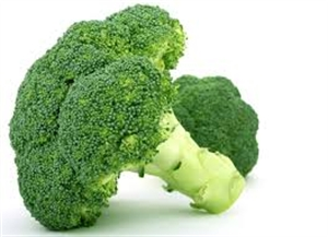 Broccoli could aid asthma sufferers